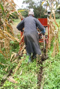 Two-wheel tractor in action at inception workshop. Photo: CIMMYT